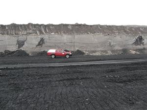 Pohřbený les na hlavě uhelné sloje